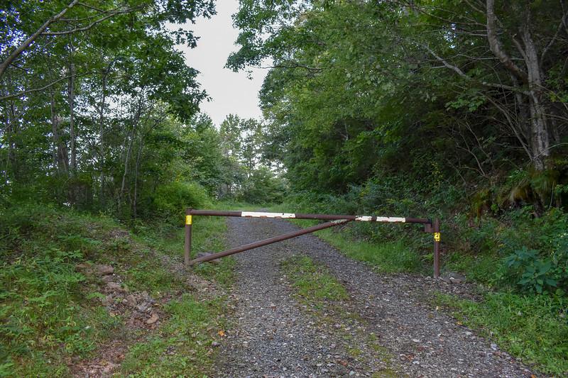 Forest Service Road 423B 'Trailhead' -- 4,560'