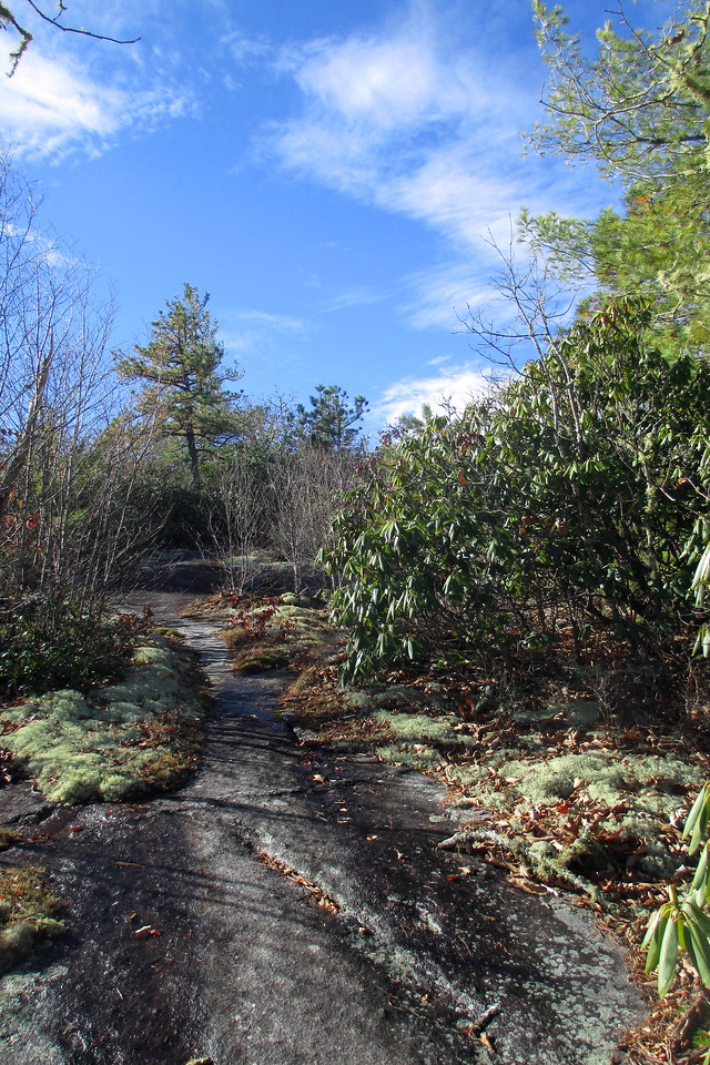 Whiterock Mountain Spur Trail