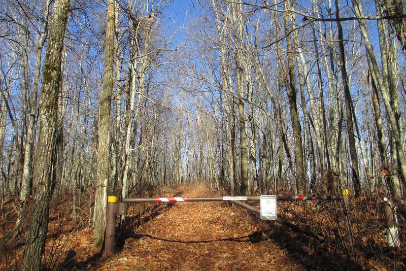 Bartram Trailhead - Jones Gap