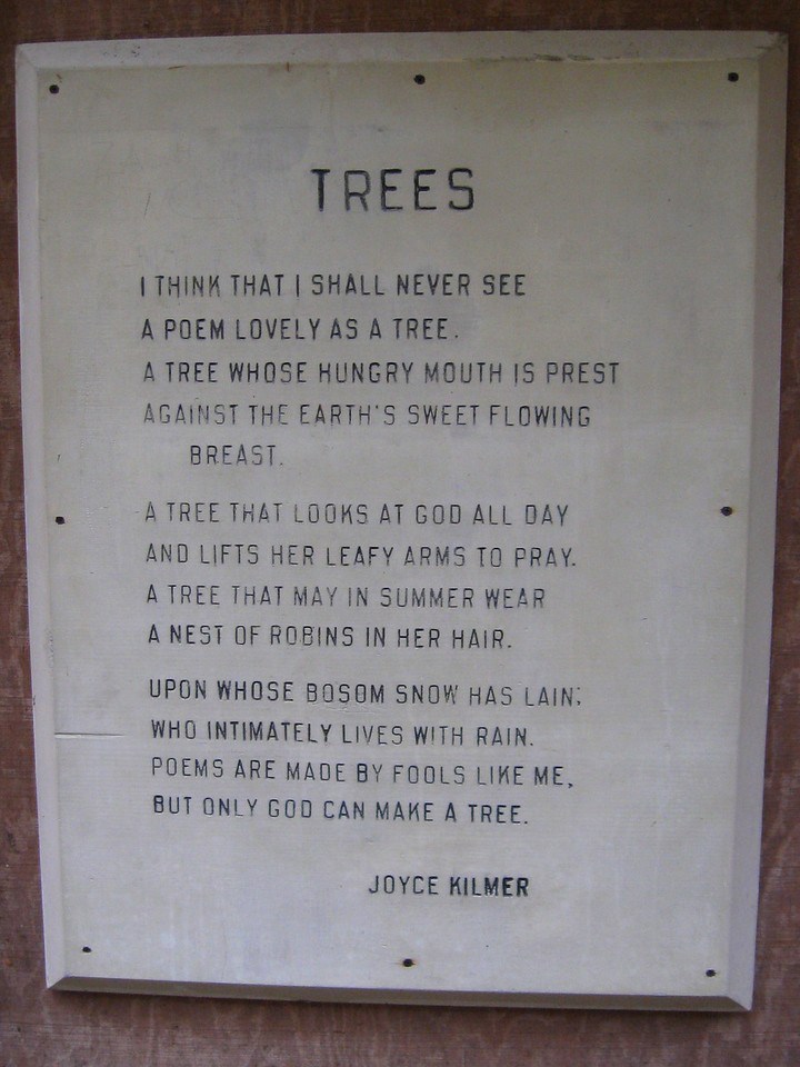 "The famous poem, ""Trees,"" by Joyce Kilmer...you can see why naming this place in honor of the man is so appropriate..."