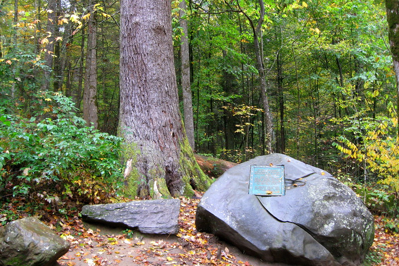 At this large memorial rock the the Memorial Loop itself begins, splitting to the right and left...