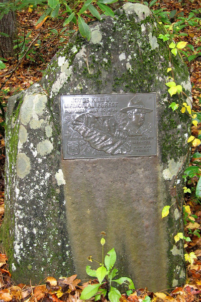 One of two memorial stones in the forest...