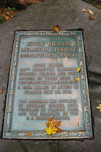 A bit of background on Joyce Kilmer.  Kilmer never actually visited this forest but it was selected in his honor by the U.S. Forest Service...