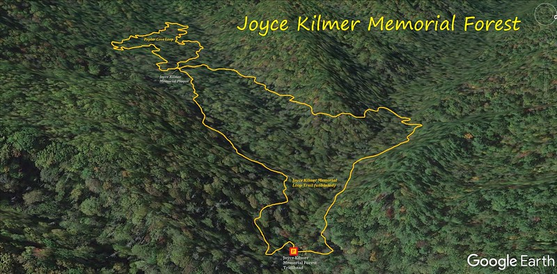 Joyce Kilmer Memorial Forest Hike Route Map