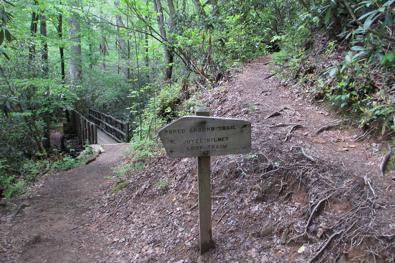 Joyce Kilmer Memorial Loop-Naked Ground Trail Junction