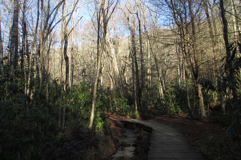 Little Green Trail