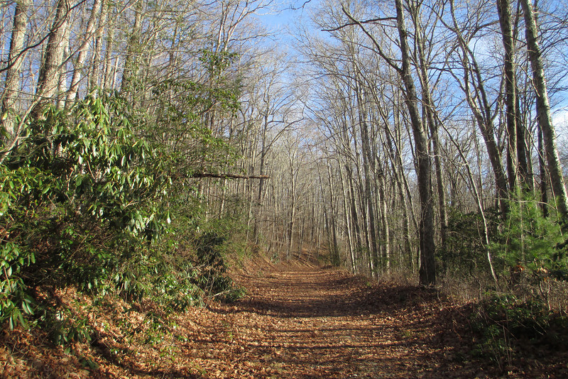 Panthertown Valley Trail