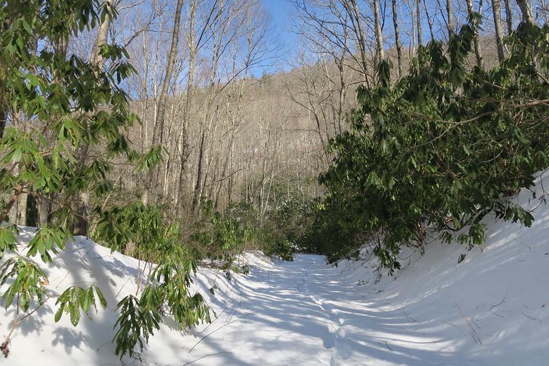 Panthertown Valley Trail