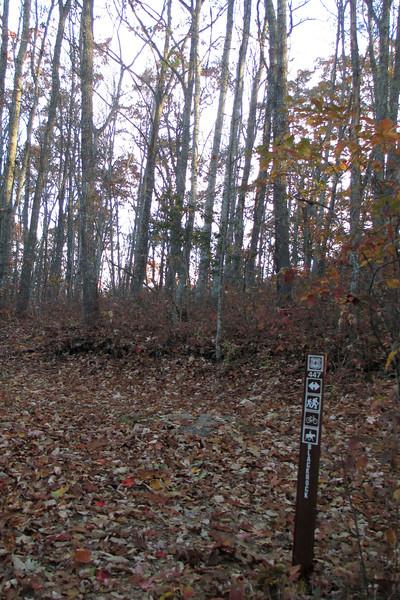 Blackrock Spur-Blackrock Trail Junction - 4,220'