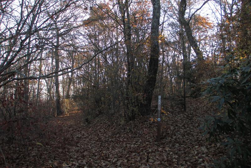 Overlook-Blackrock Trail Junction - 4,450'