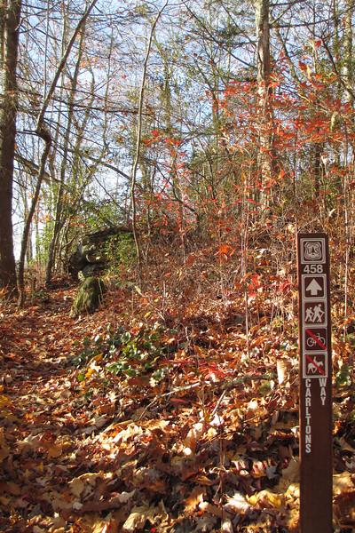 Overlook Trail-Carlton's Way Junction - 4,160'