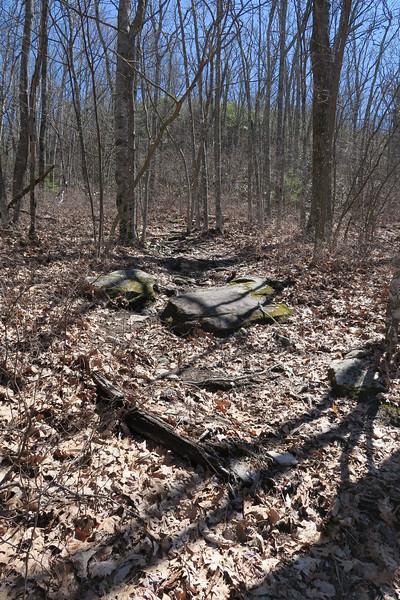 High Bethel Trail - 4,350'