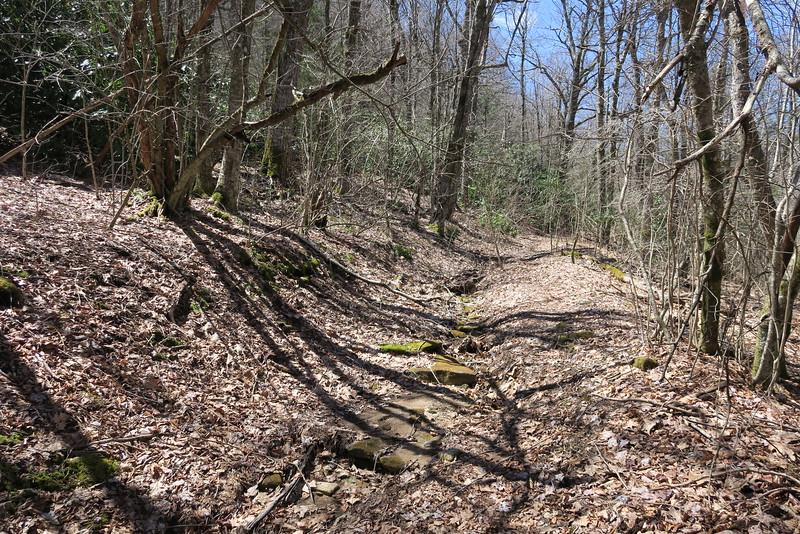 High Bethel Trail - 4,200'