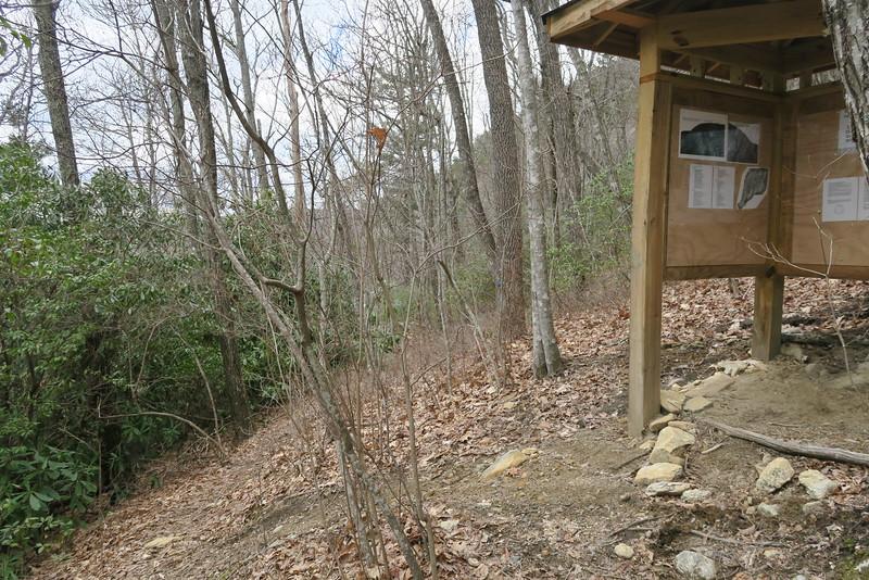 Laurel Knob Trail - 4,020'