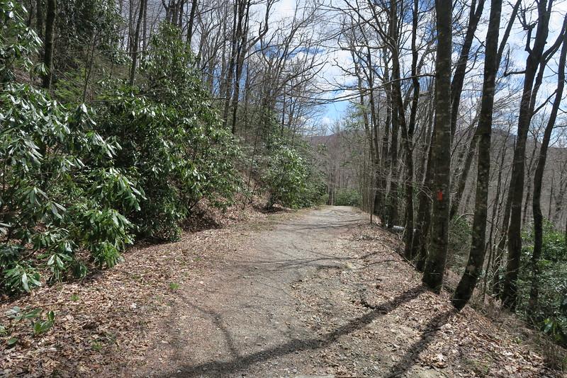 Panthertown Valley Trail - 4,050'