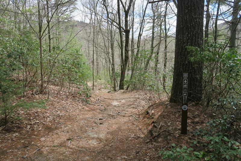 Deep Gap-Great Wall Trail Junction - 3,740'