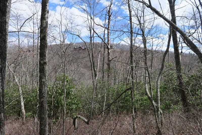 Laurel Knob Trail - 4,040'