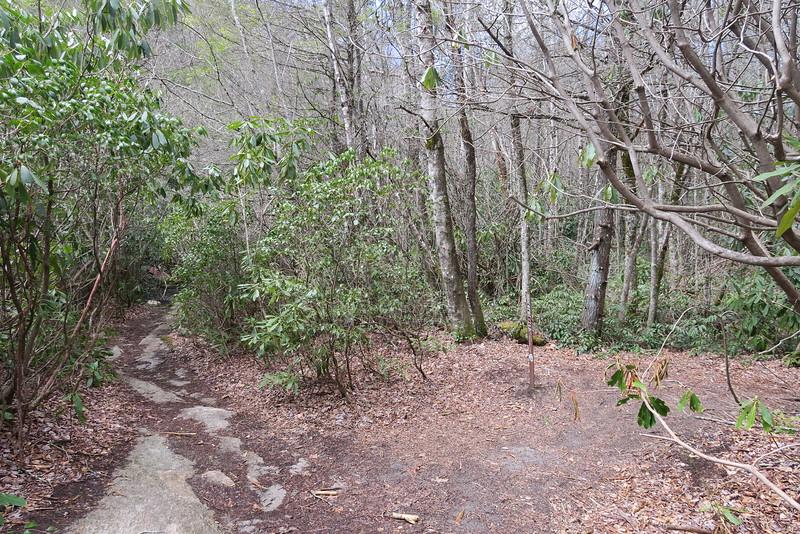 Deep Gap-Wilderness Falls Trail Junction - 3,660'
