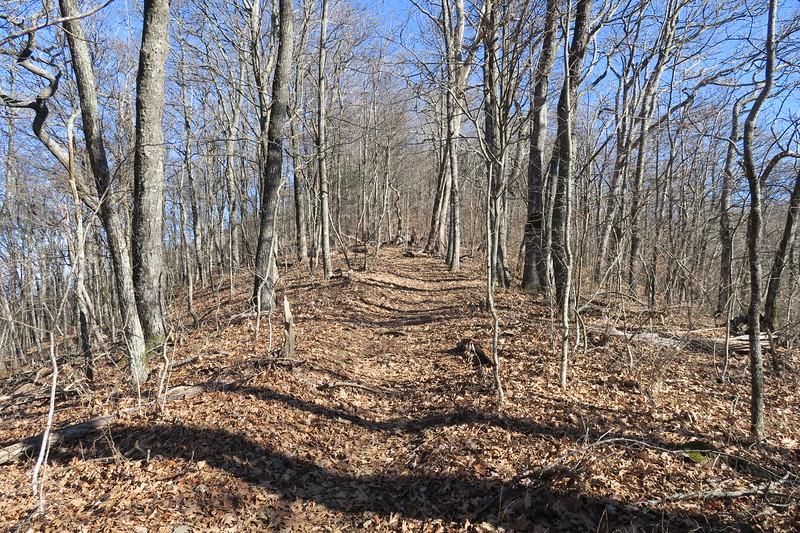 Appalachian Trail -- 4,740'