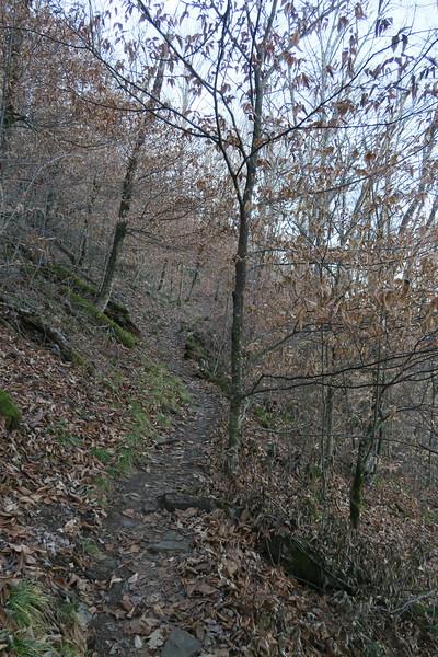 Appalachian Trail -- 4,520'