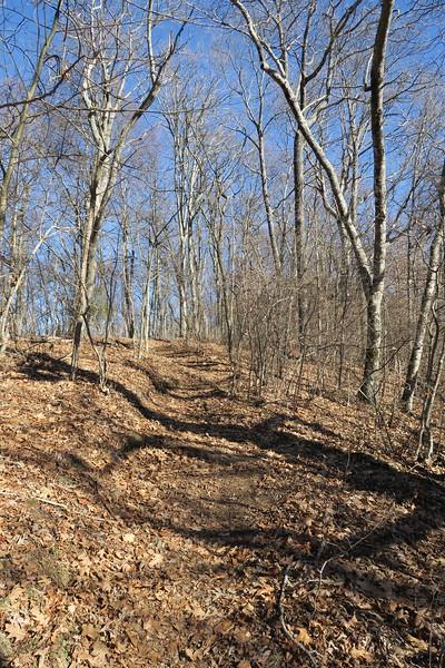 Appalachian Trail -- 4,680'