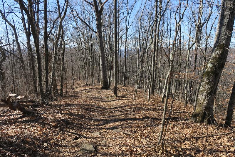 Appalachian Trail -- 4,800'