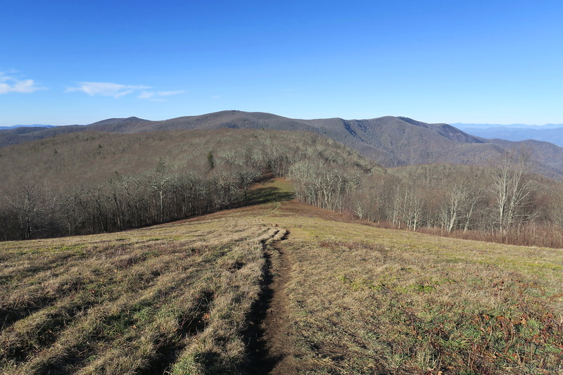 Siler Bald Spur Trail -- 5,060'