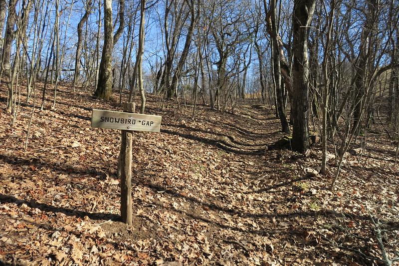 Appalachian Trail -- 4,960'