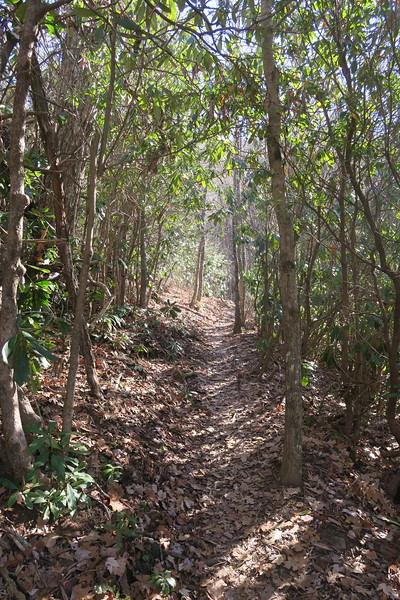 Appalachian Trail -- 4,240'