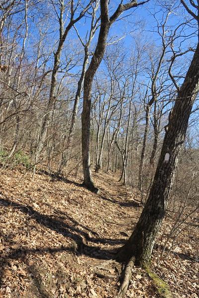 Appalachian Trail -- 4,850'