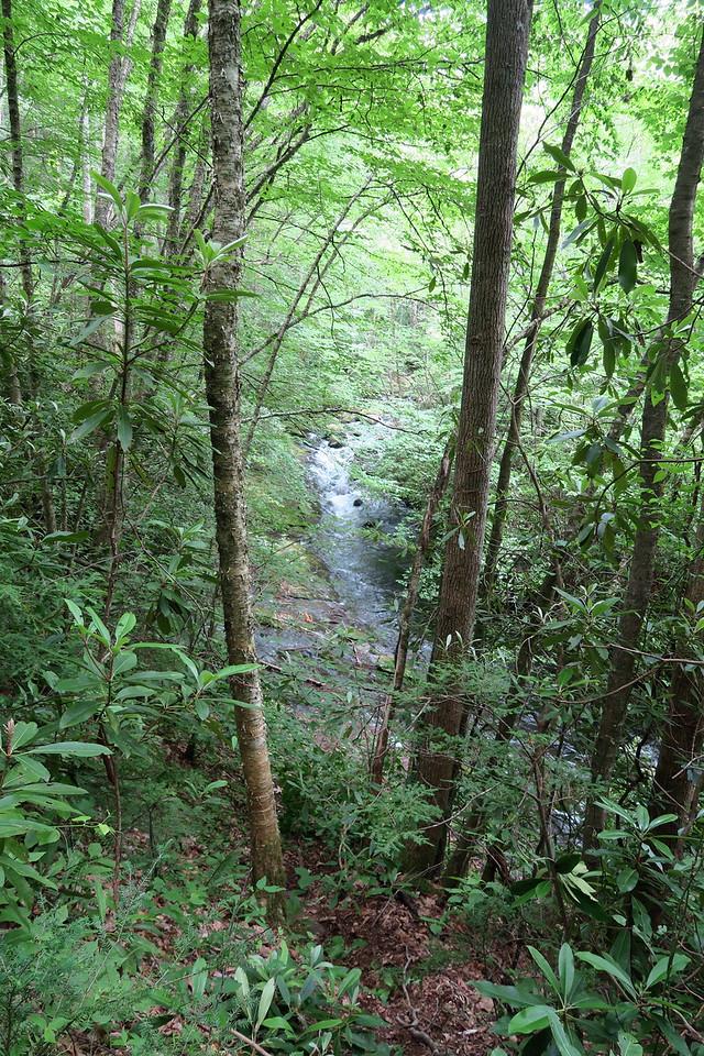 Snowbird Creek Trail -- 2,840'