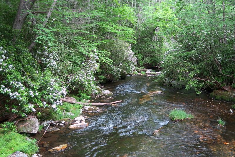 Snowbird Creek -- 3,400'