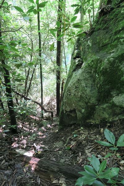 Big Falls Spur - 1,900'