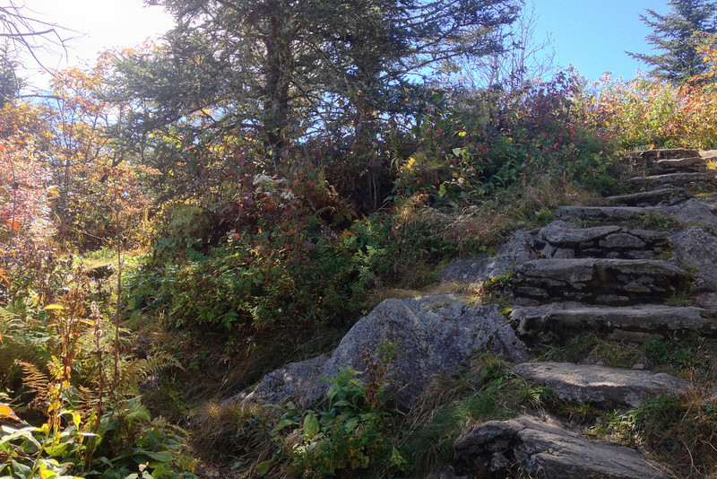 Waterrock Knob Trail