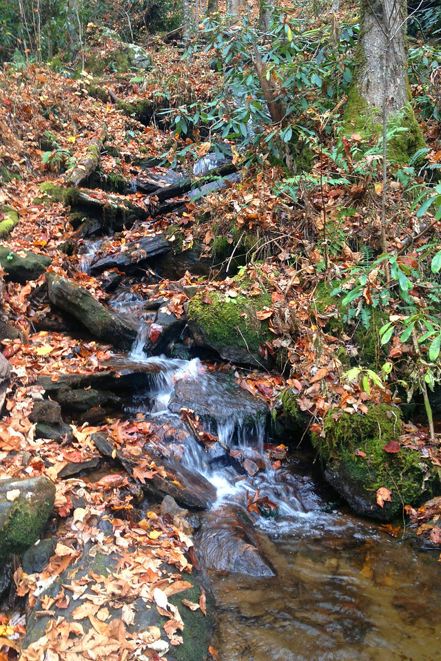 Rufus Morgan Falls Trail