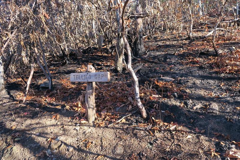 Appalachian Trail -- 3,880'