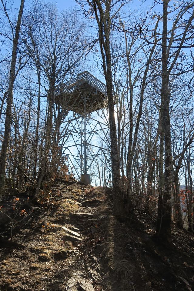 Wesser Bald Summit Spur -- 4,620'