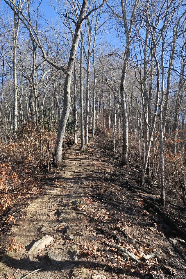 Appalachian Trail -- 4,340'