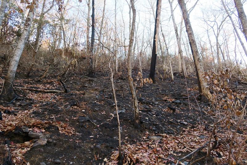 Appalachian Trail -- 3,960'