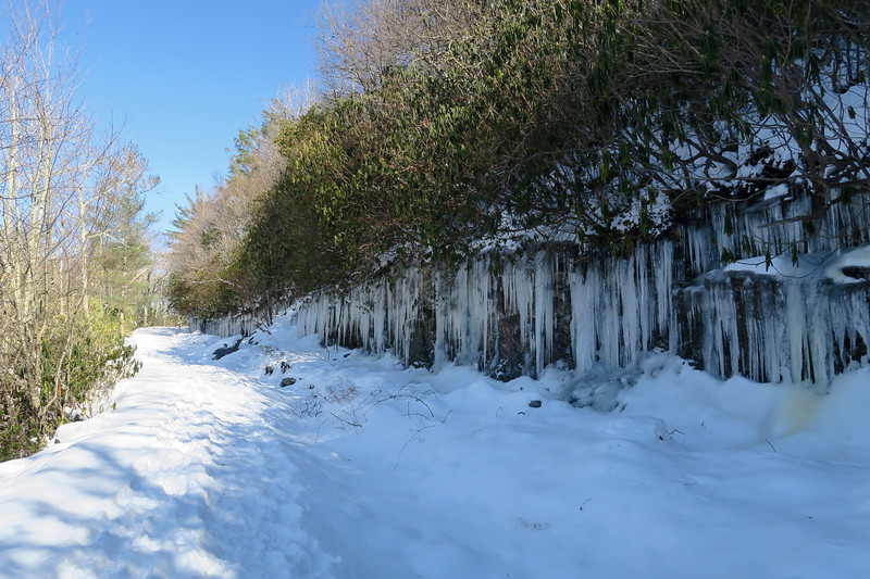 Whiteside Mountain Loop Trail -- 4,620'