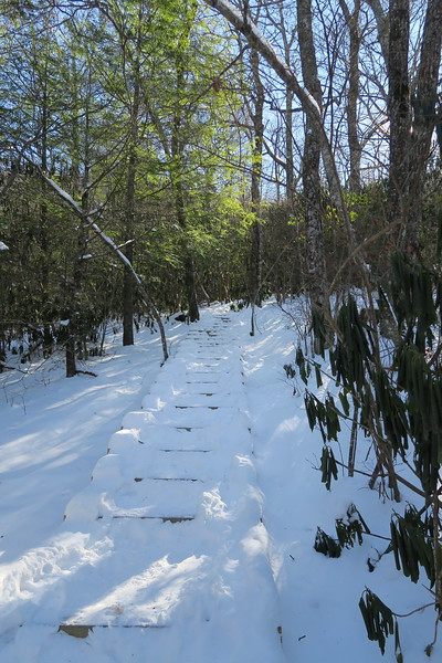 Whiteside Mountain Loop Trail -- 4,360'