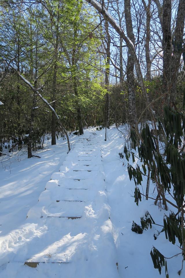 Whiteside Mountain Loop Trail -- 4,360'