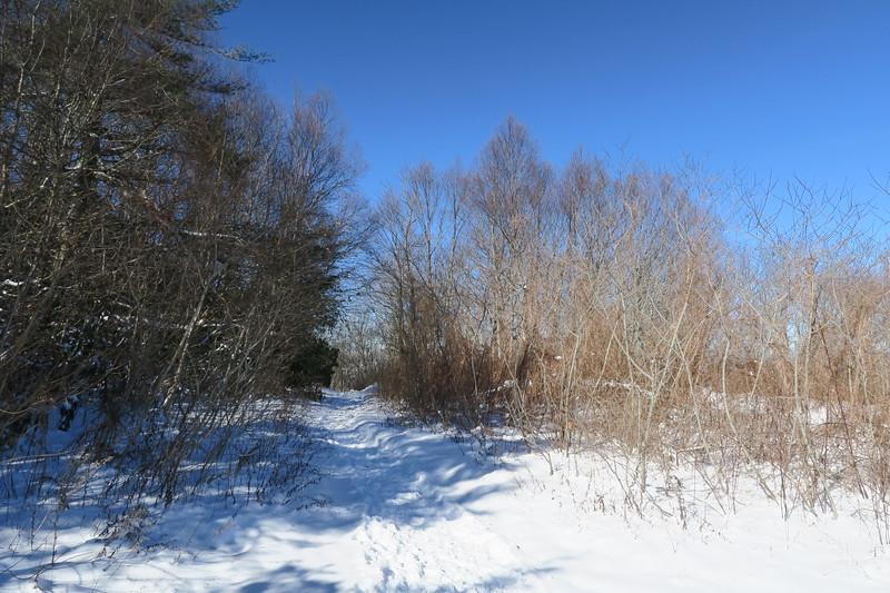 Whiteside Mountain Loop Trail -- 4,800'