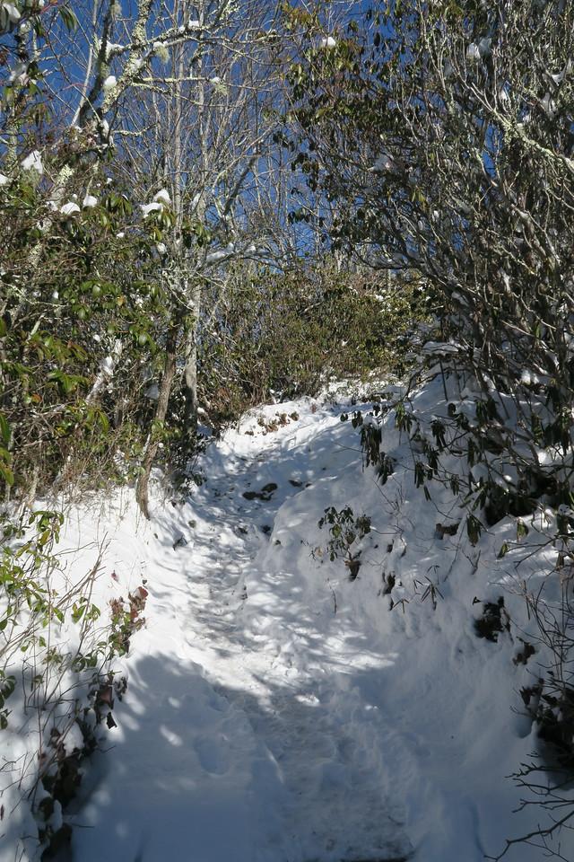Whiteside Mountain Loop Trail -- 4,900'