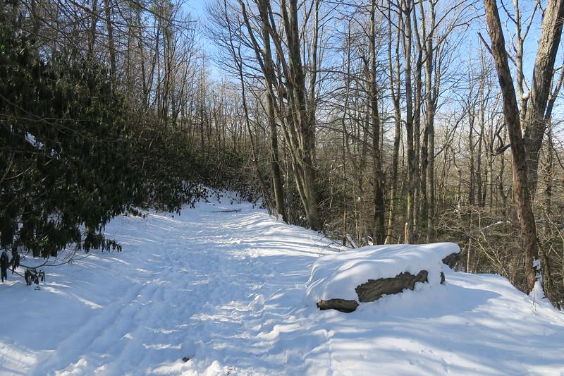 Whiteside Mountain Loop Trail -- 4,450'