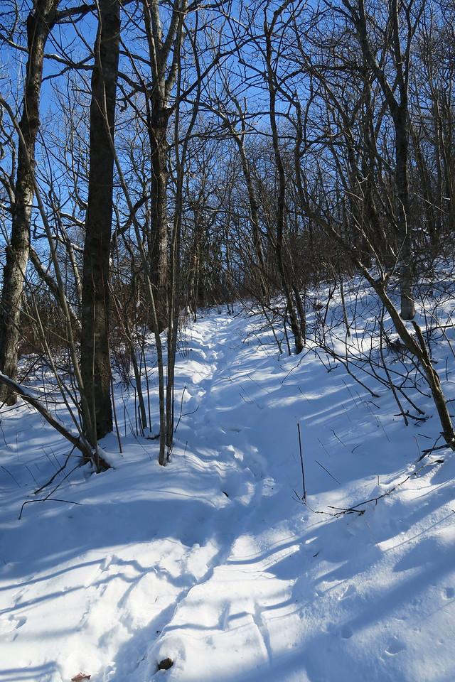 Devil's Courthouse Spur Path -- 4,700'