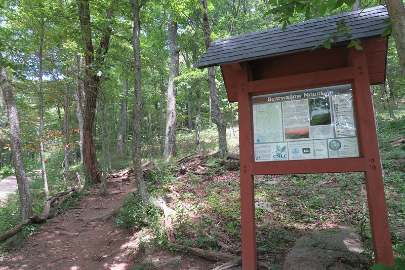 Bearwallow Mountain Trail -- 3,660'