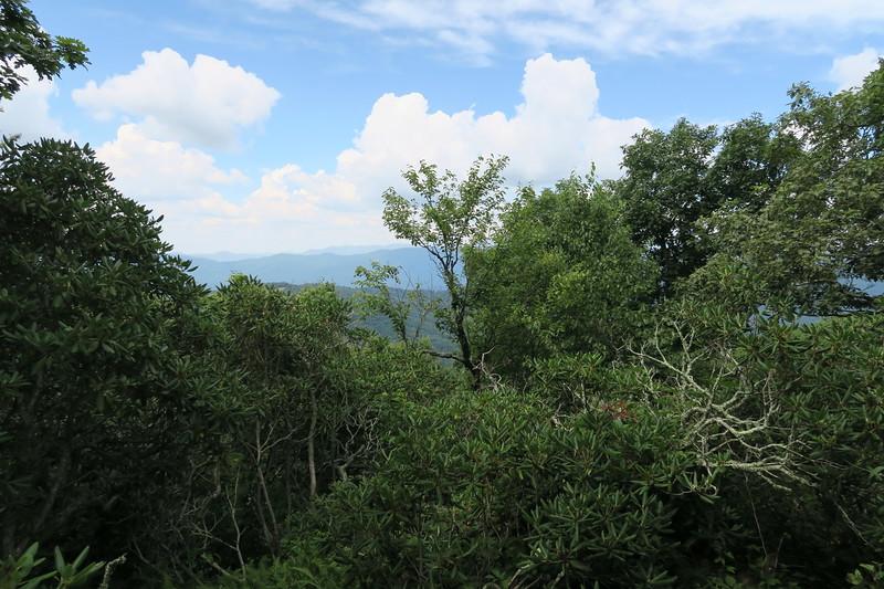 Bearwallow Mountain Trail
