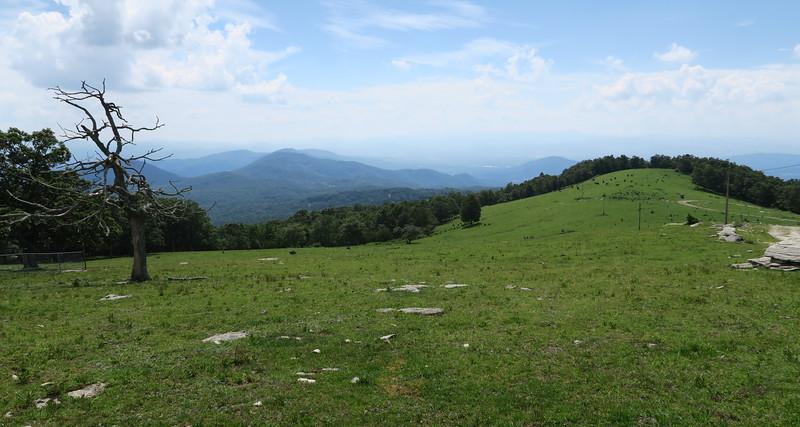Bearwallow Mountain Summit