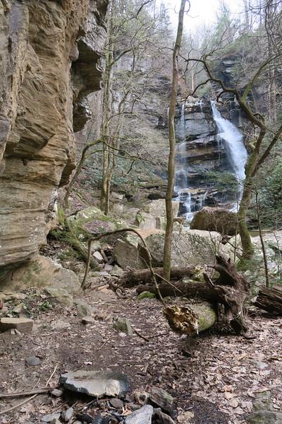 Cove Creek Path